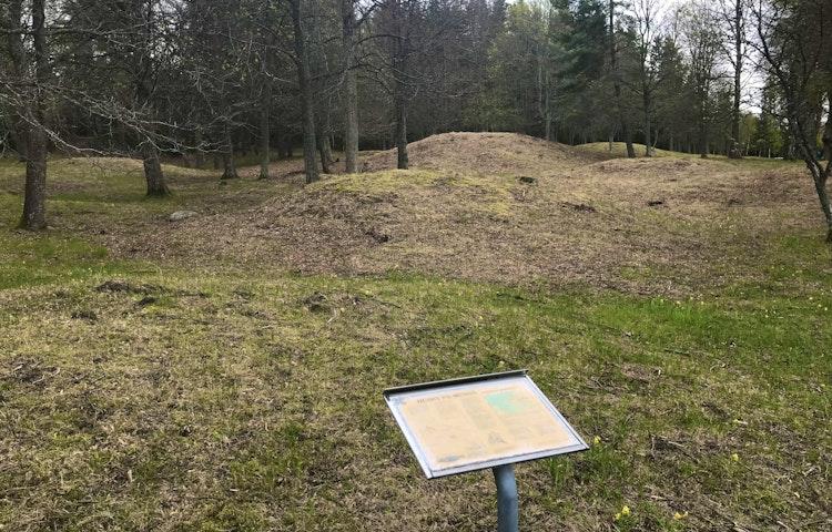 Fornlämningar i reservatets norra del. Foto: Lena Malmström