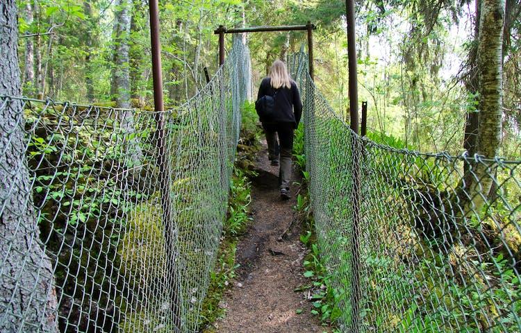 En person går på en smal stig omgärdad av stängsel.