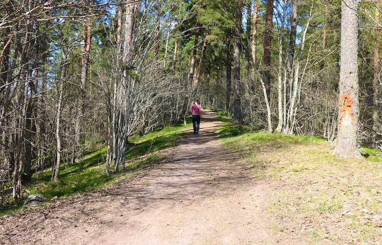 En person går på en stig.
