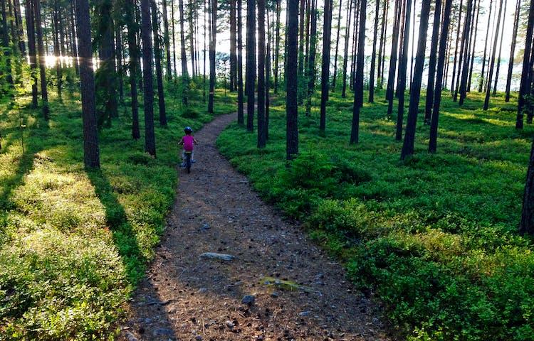Ett barn cyklar längs med en stenig skogsstig. Längre fram mellan träden skymtar vatten.