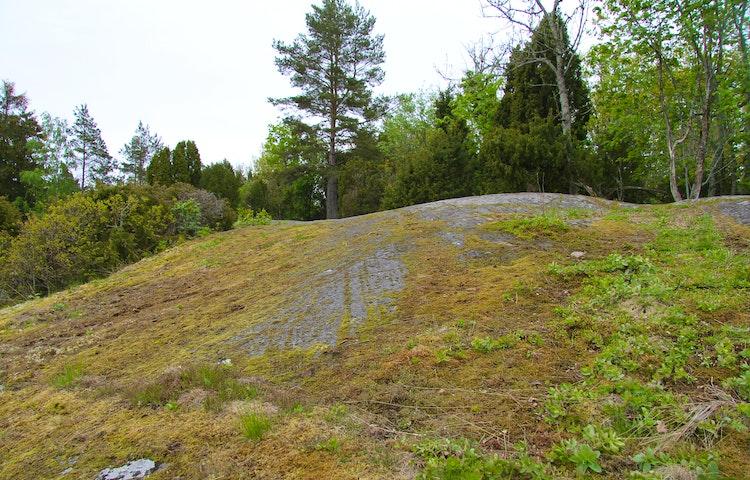 Rudöklippan mosbeklädd med skogen i bakgrunden.