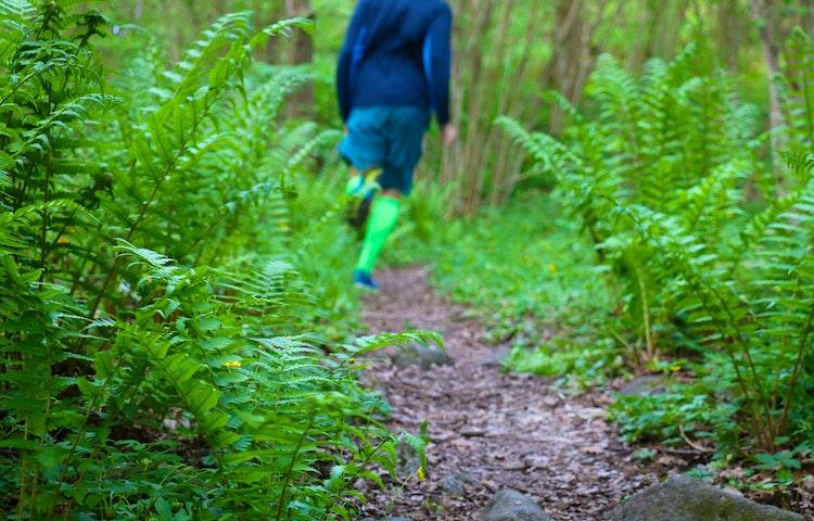 Man joggar på stigen längs leden. På sidorna växer frodiga ormbunkar.
