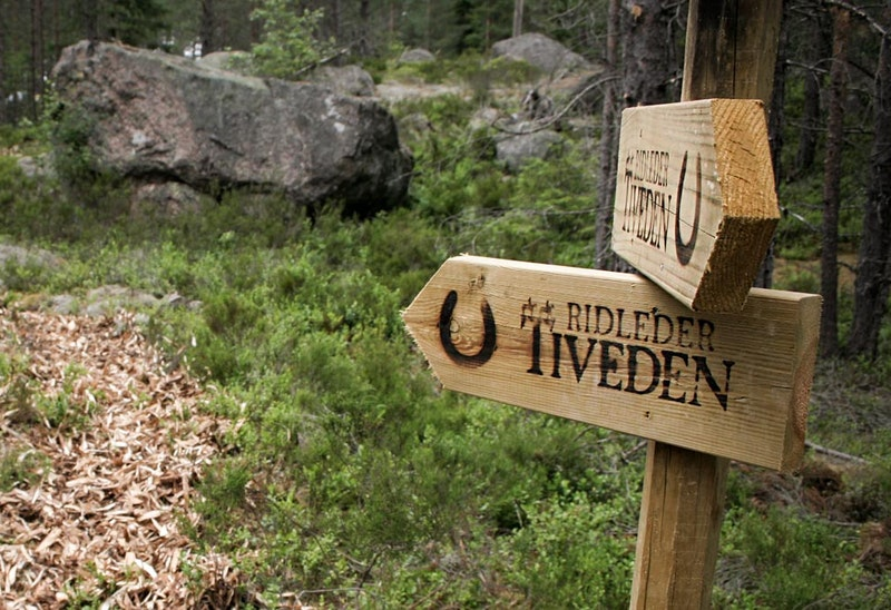 Horseback riding trails Tiveden