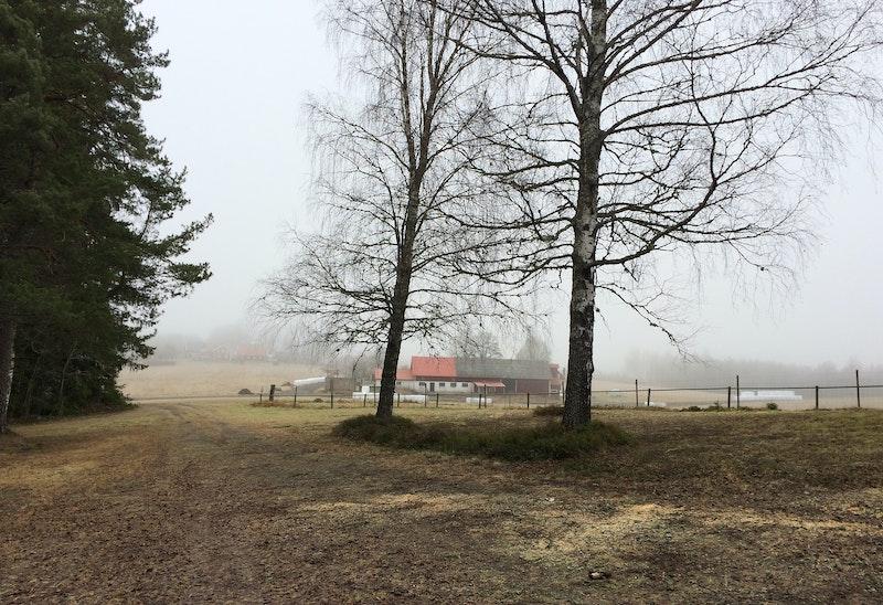 Mosshult - Naturnära Övernattningsplats för husbil