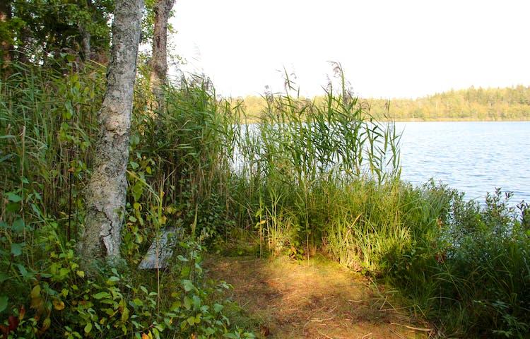 Enkel bänk vid Lilla Agnsjön.