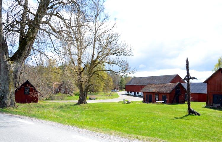 Rörby gård, Lovö naturreservat. Foto: Monica Johnson.