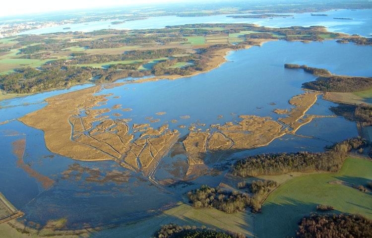Flygfoto över Asköviken och dess strandängar.