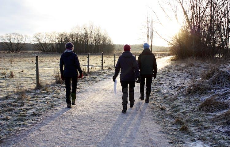 Tre vuxna promenerar längs en gångväg med stängslad hage på ena sidan. Det är frost och lite snö på marken.