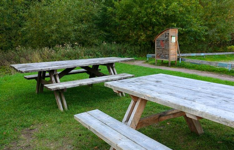 Framför ett manshögt insektshotell står två picknickbänkar.