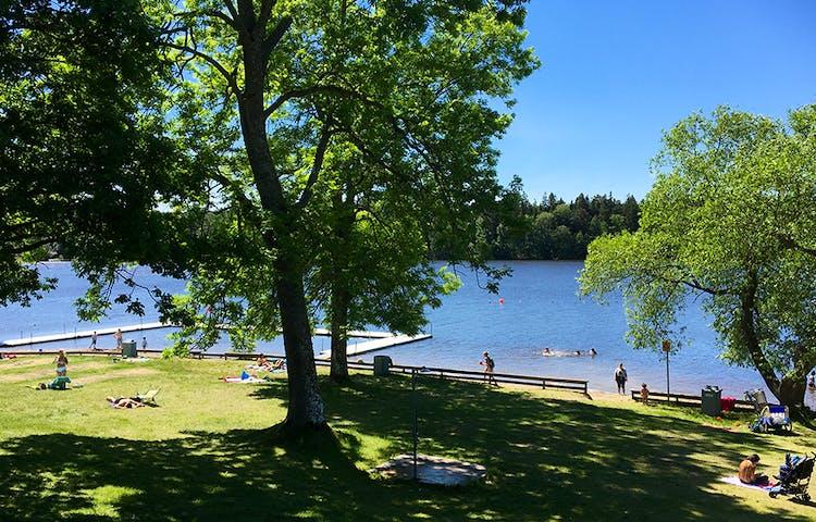 En badplats med stora träd och badbryggor.