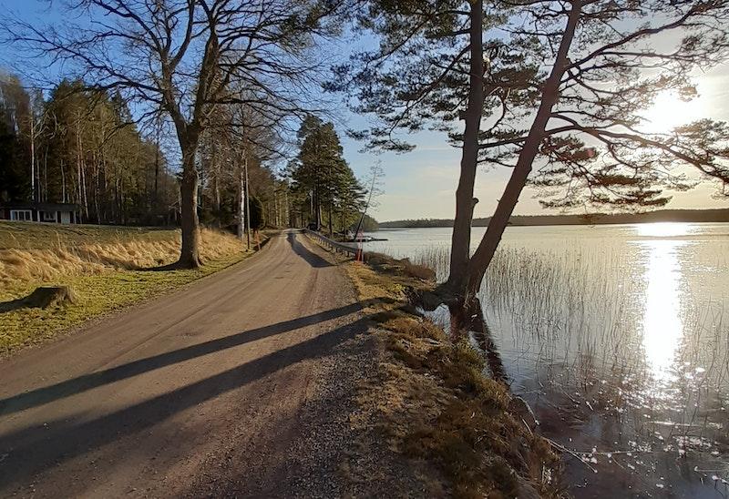 Strandfiske Östersjön