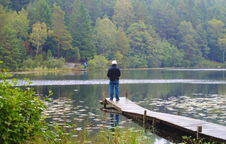 Fiske i Hornsjön