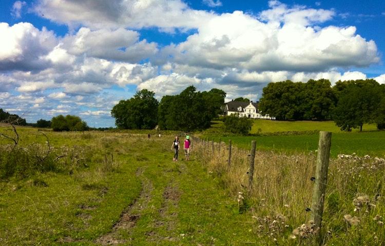 Människor går längs med ett elstängsel. Hammarskogs herrgård  står i bakgrunden.