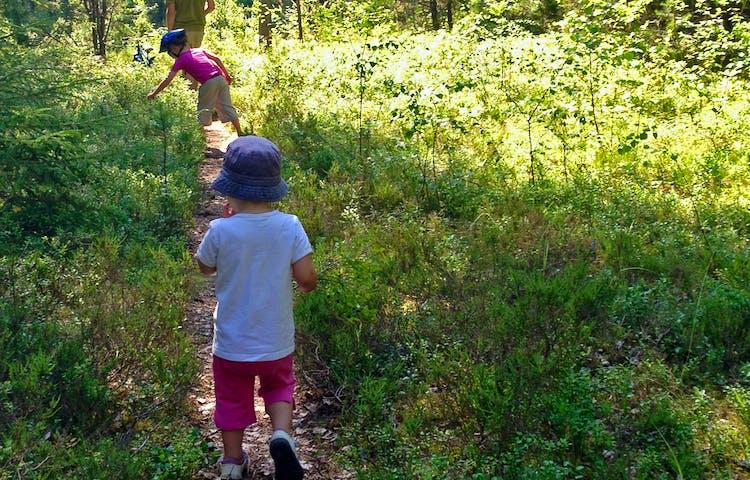 Två barn och en vuxen går längs med en smal stig genom skogen.